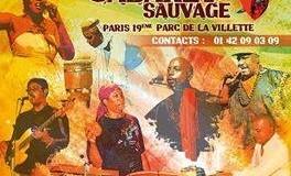 Le groupe Martiniquais BELYA en concert au Cabaret Sauvage